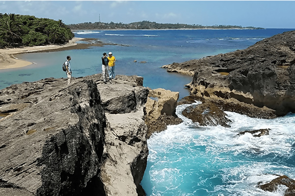 Students survey the Puerto Rican coastline
